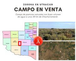 Foto Campo en Venta en  Utracan ,  La Pampa  Utracan La Pampa