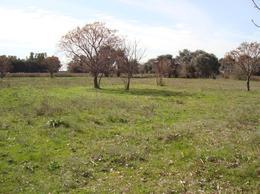 Foto Chacra en Venta en  Capilla Del Señor,  Exaltacion De La Cruz  Sin mejoras, entorno de campo