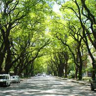 Foto PH en Venta en  Belgrano R,  Belgrano  Av. Melian al 2200