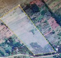 Foto Campo en Venta en  Piribebuy,  Piribebuy  Piribebuy, zona Reserva Mbatovi