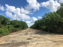 Foto Terreno en Venta en  Conkal ,  Yucatán  TIERA LOTES | CONKAL