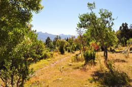 Foto Chacra en Venta en  Las Golondrinas,  Cushamen  RR521