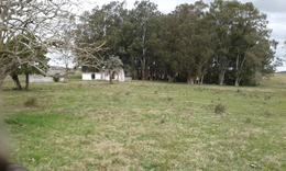 Foto Campo en Venta en  Minas ,  Lavalleja  Lavalleja - Uruguay