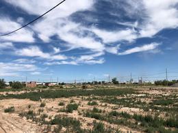 Foto Terreno en Venta en  Distrito Noreste,  Cipolletti  Los tamariscos y Kossman
