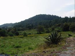 Foto Terreno en Venta en  San Mateo Atarasquillo,  Lerma  Terrenos en venta campiranos en Cañada de Alferez, Edo. de México.
