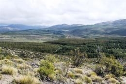 Foto Campo en Venta en  San Carlos De Bariloche,  Bariloche  618has Arroyo del Medio