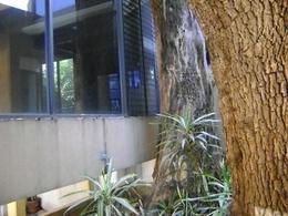 Foto Edificio Comercial en Renta en  Unidad habitacional Potrero Verde,  Cuernavaca  Edificio Potrero Verde, Cuernavaca