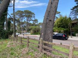 Foto Terreno en Venta en  Punta del Este ,  Maldonado  Lote en Av del Mar y Pedragosa Sierra - Punta del Este - Manzana Completa