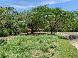 Foto Terreno en Venta en  Brasil,  Santa Ana  Tranquilidad/ Plano/ Ideal para casa de una planta o apartamentos.