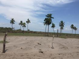 """Foto Terreno en Venta en  Rancho o rancheria San Andrés,  Santiago Ixcuintla  Terreno Venta Playa """"El Colorado"""" Nayarit $220,000 Yaresp E5"""