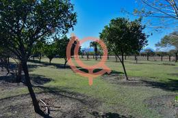 Foto Quinta en Venta en  San Juan,  Cadereyta Jiménez  QUINTA CAMPESTRE EN VENTA CADEREYTA NUEVO LEON