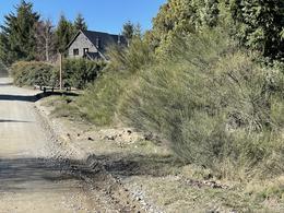 Foto Terreno en Venta en  Arelauquen,  Bariloche  Arelauquen