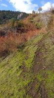 Foto Chacra en Venta en  Cerro Amigo,  El Bolson  Cerro Amigo, El Bolson.