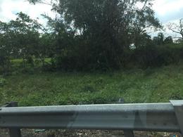 Foto Terreno en Venta en  Ixhuatlán del Sureste ,  Veracruz  Terreno Industrial en Venta, Autopista Mina- Nuevo Teapa