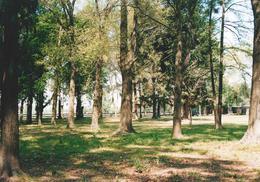 Foto Terreno en Venta en  Villa Rosa,  Pilar  Villa Rosa