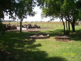 Foto Campo en Venta en  Punta Indio,  Punta Indio  79 HA. PUNTA INDIO