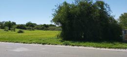 Foto Terreno en Venta en  La Arboleda,  Villa Carlos Paz   Carlos Paz: LA ARBOLADA HOLLYWOOD