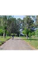Foto Terreno en Venta en  La Plata ,  G.B.A. Zona Sur  Avenida 137 3000