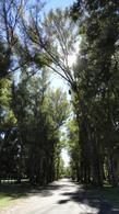 Foto thumbnail Terreno en Venta en  Haras San Pablo,  Countries/B.Cerrado  Lote en Haras San Pablo, Club de Campo