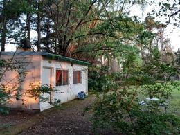 Foto Casa en Venta en  Parque Sakura,  Countries/B.Cerrado (Exaltación)  Jose Ingenieros