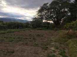 Foto Terreno en Venta en  Tumbaco,  Quito  Tumbaco - Collaquí, Para Urbanizadores, Hermoso Terreno en Venta, 20.000 m2