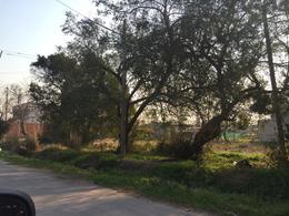 Foto Terreno en Venta en  La Plata ,  G.B.A. Zona Sur  36 e 146 y147