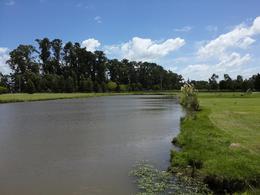 Foto Terreno en Venta en  Posadas de los Lagos,  Coronel Brandsen  Lote con lago en barrio cerrado Brandsen .