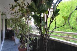 Foto Departamento en Venta en  Botanico,  Palermo  Demaría al 4400