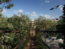 Foto Terreno en Venta en  Tulum ,  Quintana Roo  Terreno residencial - Amenidades ESPECTACULARES  a SOLO  15 min del Centro de TULUM