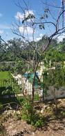 Foto Departamento en Venta en  Jardines de Ciudad Mayakoba,  Solidaridad  Jardines de Ciudad Mayakoba