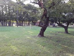 Foto Quinta en Alquiler | Venta en  Ministro Rivadavia,  Almirante Brown  REPUBLICA ARGENTINA 5297 ESQUINA 25 DE MAYO