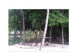 Foto Terreno en Venta en  Puerto Morelos,  Puerto Morelos  Puerto Morelos