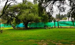 Foto Quinta en Alquiler | Alquiler temporario en  Monte Grande,  Esteban Echeverria  Pedro Dreyer al al 1500
