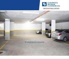 Foto Oficina en Venta | Alquiler en  Ciudad Vieja ,  Montevideo  Ciudad Vieja