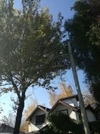 Foto Departamento en Venta en  Los Abedules,  El Bolson  RR3721
