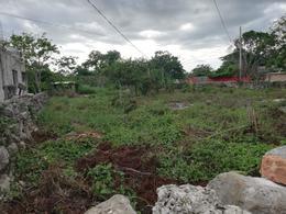 Foto Terreno en Venta en  Motul de Carrillo Puerto Centro,  Motul  Terreno en venta  sobre carretera Telchac Pueblo
