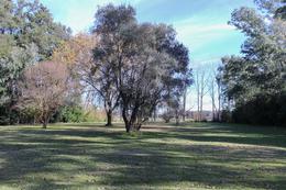 Foto Terreno en Venta en  Parque Udaondo,  Del Viso  Artigas y Giménez