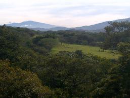 Foto Terreno en Venta en  Guacima,  Alajuela  TERRENO ALTA DENSIDAD EN LA GUACIMA FRENTE A HACIENDA LOS REYES.