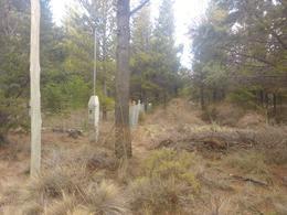 Foto thumbnail Terreno en Venta en  San Carlos De Bariloche,  Bariloche  Ñirihuau