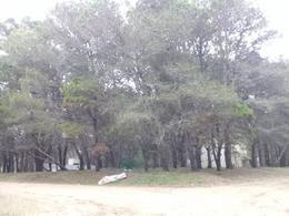 Foto Terreno en Venta en  Mar Azul,  Villa Gesell  43 y pinamar al 100