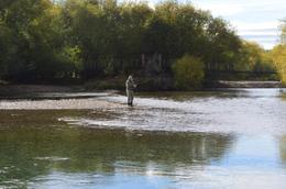 Foto Campo en Venta en  Cholila,  Cushamen  Lago Cholila