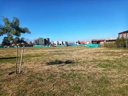 Foto Terreno en Venta en  Pilar Del Este,  Countries/B.Cerrado (Pilar)  Venta Lote Interno - Barrio San Ramón (Pilar del Este)