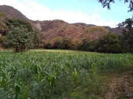 Foto Campo en Venta en  San Juan,  Malinalco  Terreno El Tetel,, paraje el Rincon, sin Numero, Barrio de San Juan Malinalco Edo Mex.