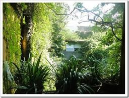 Foto Casa en Venta en  Palermo Soho,  Palermo  Honduras al 4700