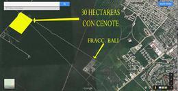 Foto Terreno en Venta en  Guadalupe ,  Zacatecas  30 Hectareas en venta con Cenote Playa del Carmen