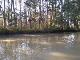 Foto Terreno en Venta en  Carapachay,  Zona Delta Tigre  Carapachay Km. 15