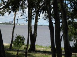 Foto Chacra en Venta en  Rosario ,  Colonia  Rosario