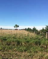Foto Terreno en Venta en  Cañuelas ,  G.B.A. Zona Sur  Chacras de Penna