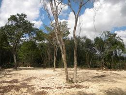 Foto Terreno en Renta en  Colegios,  Cancún  Terreno en Renta en Cancún, Colegios. 2500 m2, Supermanzana 307 Zona Huayacan.