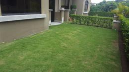 Foto Casa en Renta en  Pozos,  Santa Ana  Apartamento con línea blanca/ Jardín/ Pet Friendly
